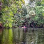 The Ocklawaha River