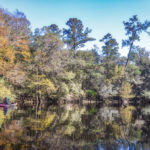 Paddling Downstream - River Rise