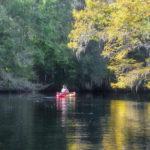 Paddling in Fall - Withlacoochee