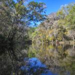 The Santa Fe River - Fall at River Rise